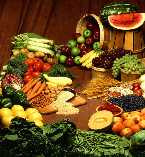 imagen de lo que significa orgánico
