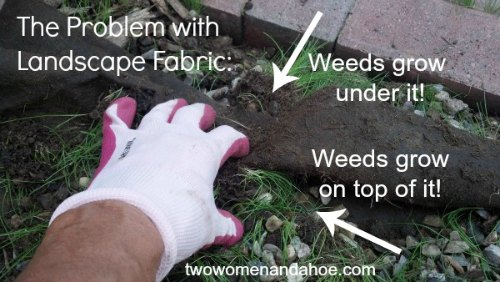 Landscape Fabric – Weed Barrier Cloth - Landscape Fabric - Weed Barrier Cloth Does Not Work