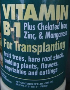 vitamin b1 for plants