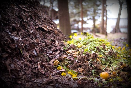 Benefits of composting