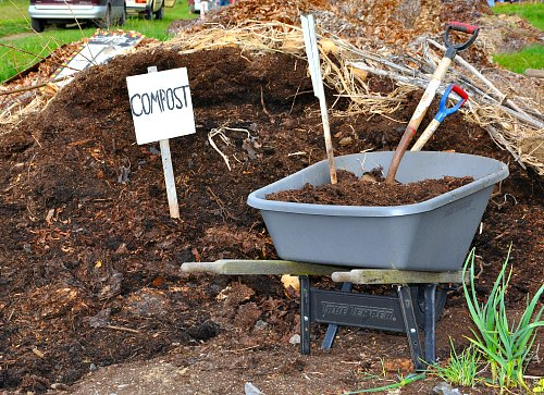 Too Much Compost - Is It Poisoning Your Garden? - Garden Myths