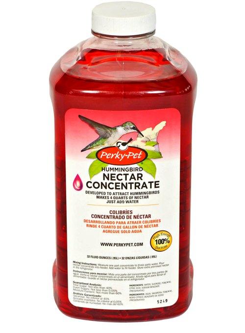 Hummingbird Nectar Food - Should You Buy It? - Garden Myths