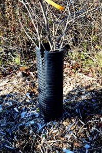 Protección de árboles de tubería de drenaje de plástico, dividida en el lateral, por Robert Pavlis