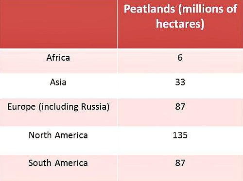 Distribución de turberas a nivel mundial