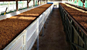 Commercial Vermicomposting