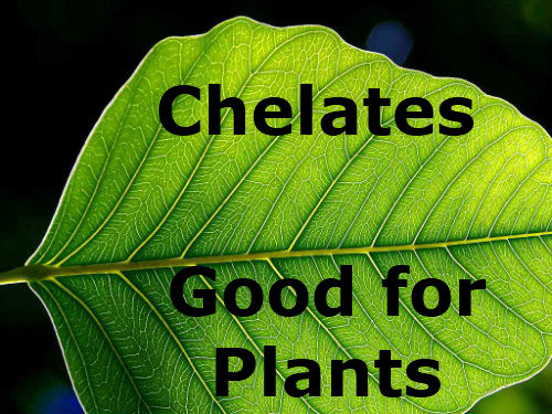Will Chelates Improve Plant Growth?