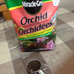 Miracle-Gro orchid media