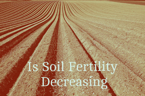 Is soil fertility decreasing?