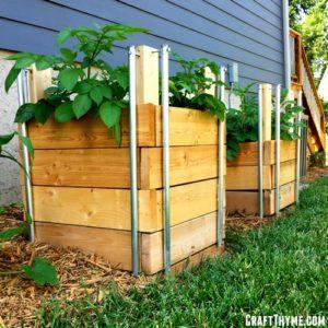 Los 10 mitos sobre jardinería más importantes de 2019