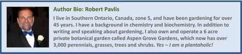 Las maravillas detienen los gusanos de la col: ¿es este un buen cultivo complementario?