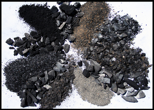 Biochar does it really work in the garden garden myths for Stufa pirolitica wikipedia