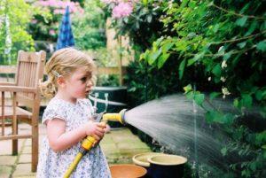 ¿Cuál es el mejor horario de riego para su jardín ?, foto de Dan Hughes
