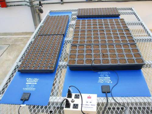 Heating Pad For Seedling