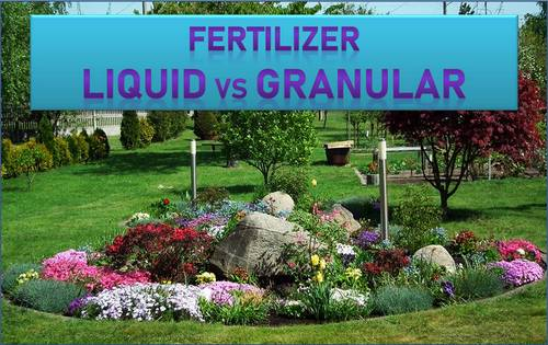 Unknown Facts About Organic Fertilizer Vs. Synthetic: What's The Difference?
