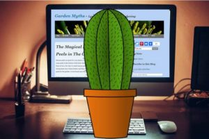 Un cactus frente a la computadora funciona.