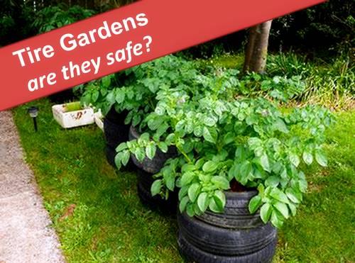 Jardines de neumáticos para papas y tomates: ¿es seguro?, Fuente de la foto Lovetoknow