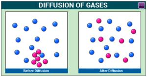 Difusión de gases, moléculas de color púrpura concentradas (agua) se difunden para llenar la habitación, foto de byjus.com